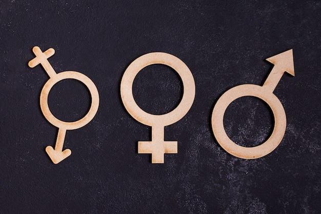 Gender equality concept icon