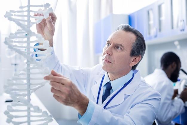 유전자 돌연변이. 똑똑한 멋진 남성 과학자가 dna 모델을보고 실험실에서 일하면서 연구합니다.