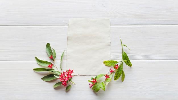 Disposizione delicata di fiori e carta Foto Gratuite