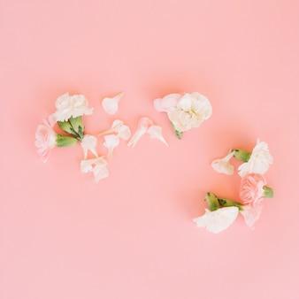 Gentle flowers petals on pink