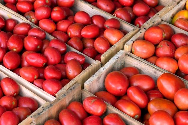 卸売市場の屋台でのトマトの木枠との幾何学的構成。ブラジル、サンパウロ市