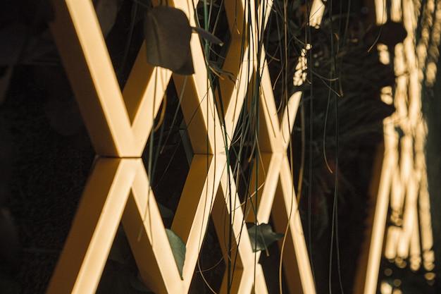 幾何学的な木製のファンスと植物