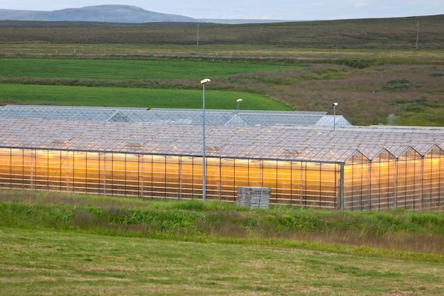 北アイスランドの地熱温室