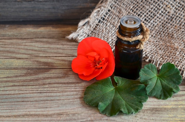 Geranium essential oil in a glass bottle with flower and leaf of the geranium plant. geranium oil for spa, aromatherapy and bodycare. extract oil of geranium.