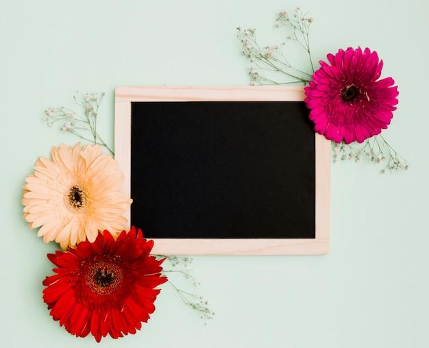 Gerbera flower decoration on wooden blank slate against pastel green background