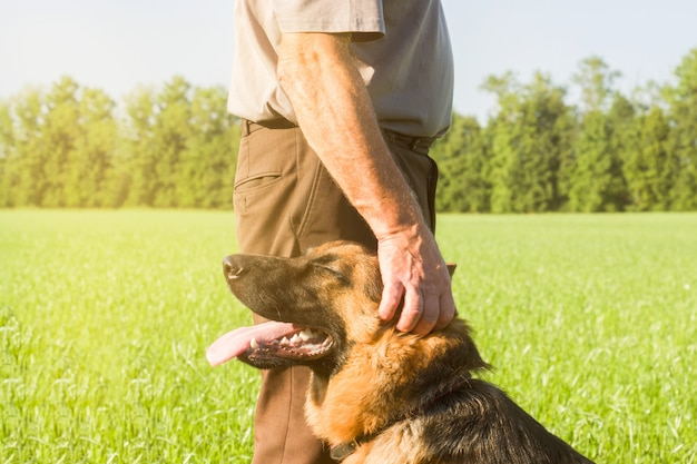 German shepherd stroking his master's hand outdoors in a field.