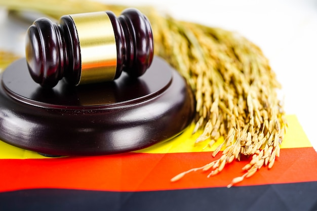 Germany flag and judge hammer with gold grain from agriculture farm.