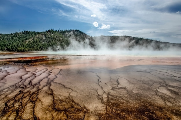 Geyser in yellowstone national park. incredibly beautiful geyser (hot spring) in yellowstone national park. amazing colors. wonder of the world. wyoming usa
