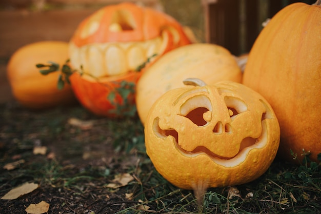 Ghost pumpkins on halloween. ead jack on an autumn . holiday outdoor decorations