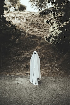 Ghost standing on route