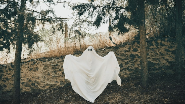 Ghost with unfolding arms standing near wall in park