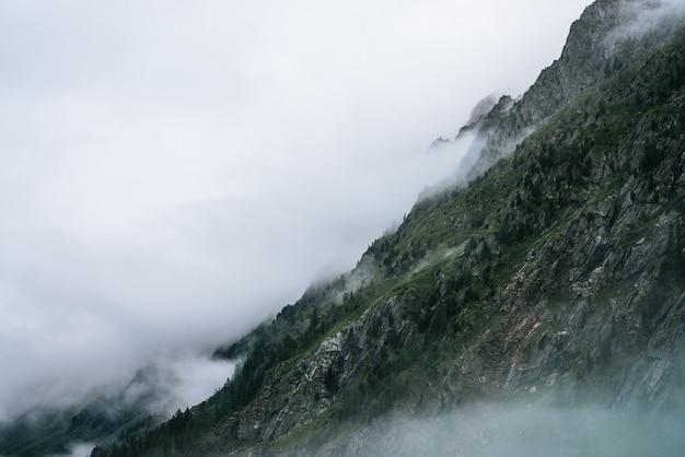 바위 산 중턱에 유령 안개가 자욱한 침엽수 림. 짙은 안개 속의 큰 바위에 대한 대기보기. 침엽수 나무가있는 거대한 산들 사이의 낮은 구름. 이른 아침에 미니멀리즘 극적인 풍경.