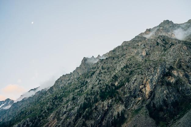濃い霧の中の木と幽霊のような巨大な岩