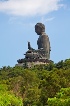 Гигантский остров будды лантау в гонконге