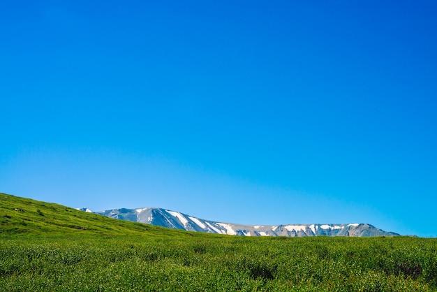 Гигантские горы и зеленый луг с богатой растительностью горных на холме под голубым небом.