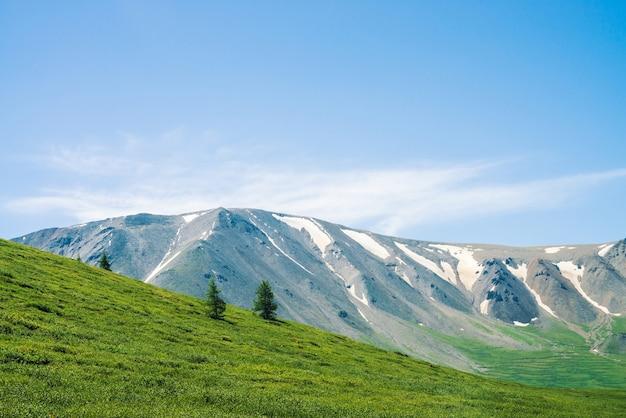 Гигантские горы со снегом над зеленой долиной в солнечный день. луг с богатой растительностью и деревьями нагорья в солнечном свете. удивительный горный пейзаж величественной природы.