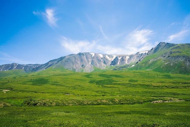Гигантские горы со снегом над зеленой долиной с лугом и лесом в солнечном дне. богатая растительность горной местности в солнечном свете. удивительный горный пейзаж величественной природы.