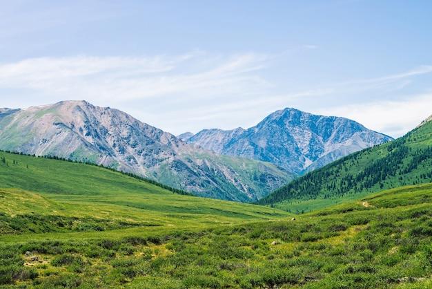 晴れた日には牧草地と森のある緑の谷の上に雪が降る巨大な山々。日光の下での高地の豊かな植生。
