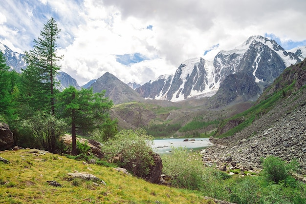 巨大な雪に覆われた山脈。山の湖の近くの谷の針葉樹。日光の下で雪が降る氷河。