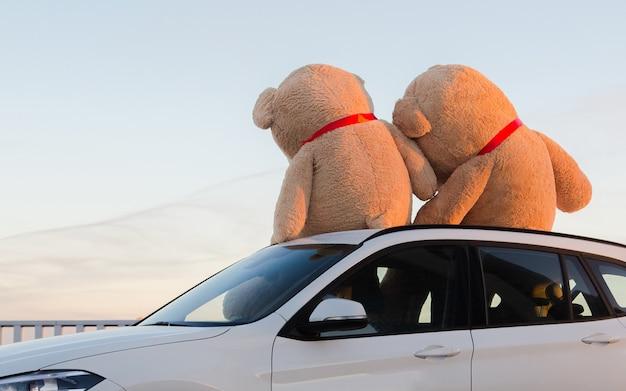 Гигантские плюшевые мишки с красными лентами сидят на капоте автомобиля на открытом воздухе.