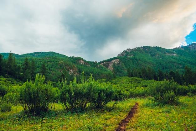 Гигантские грозовые тучи над горами с лесом. огромные кучево-дождевые облака в горной местности. удивительный яркий драматический горный пейзаж. атмосферный красочный живописный горный пейзаж. прекрасные зеленые пейзажи.
