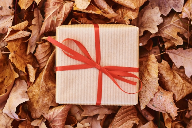 Gift box on falling autumn leaves