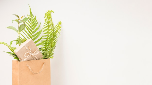 A gift box and green fern leaves in brown paper bag with space for text