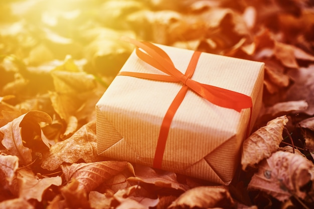Подарочная коробка на падающих осенних листьях