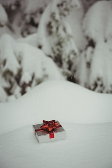 Gift box in a snowy landscape