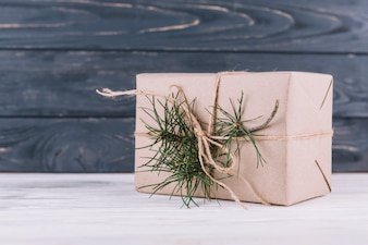 Gift box with green fir tree branch
