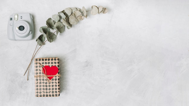 Gift box in wrap with ornament heart near plant twigs and camera