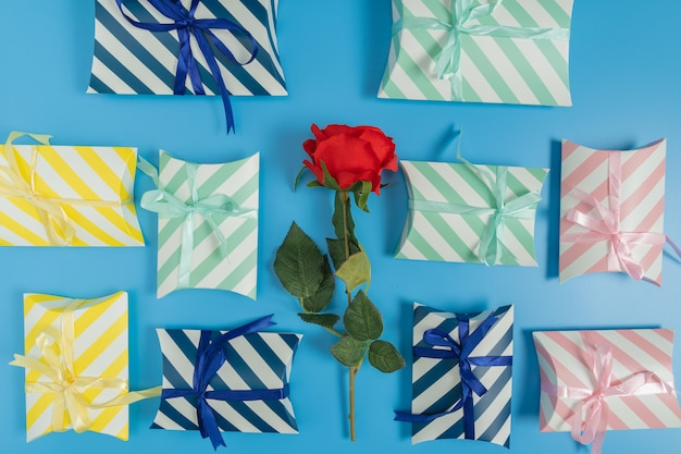 Gift boxes on a blue background with a red rose
