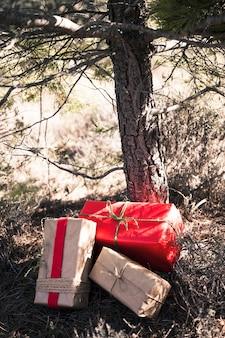 나무 아래 선물 상자