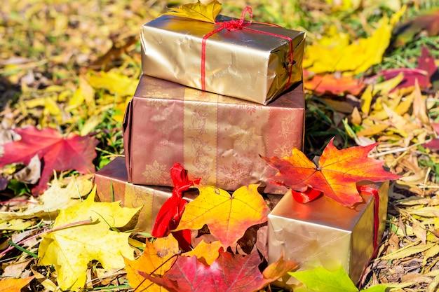 마른 잎 선물 상자
