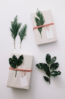 Gift boxes with green plants on white table