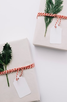 Gift boxes with green plants