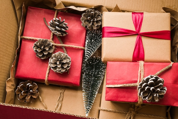 Подарочные коробки с маленькими елями и шишками