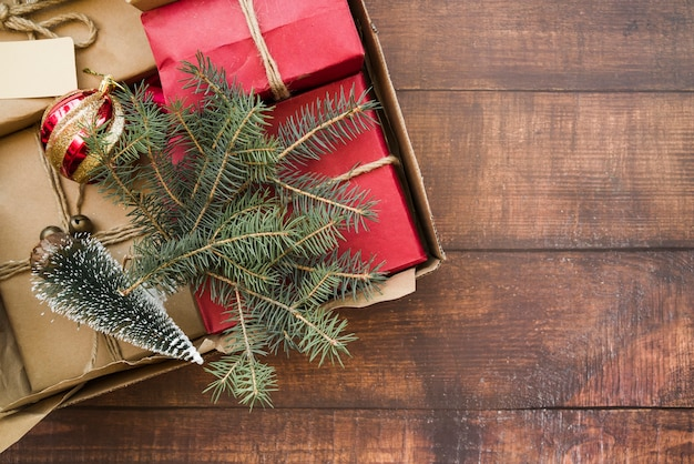 Gift boxes with small fir trees in cardboard box