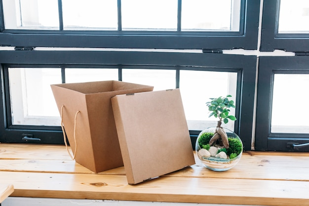Gift cardboard box and a plant on wooden surface by the window