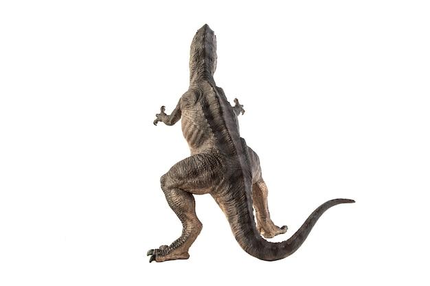 白い背景の上のギガノトサウルス恐竜。
