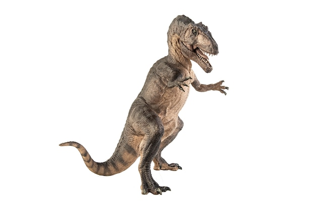 Гиганотозавр динозавр на белом фоне.