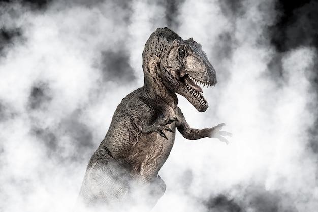 Giganotosaurus dinosaur on smoke background