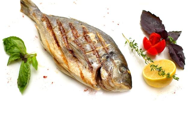 白い背景のヨーロッパヘダイの魚
