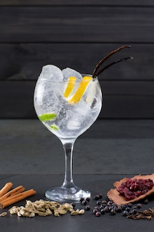 Gin tonic cocktail with ice vanilla lima and varied spices