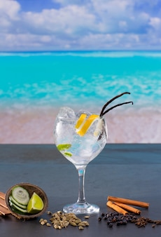Gin tonic cocktail with spices in  tropical caribbean beach