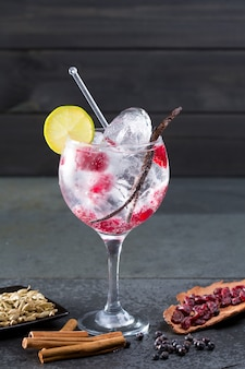 Gin tonic cocktail with vanilla raspberry lima slice and ice