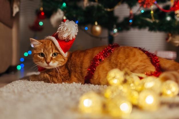 Рыжий кот играет с гирляндой под елкой дома, лежа на полу дома новый год