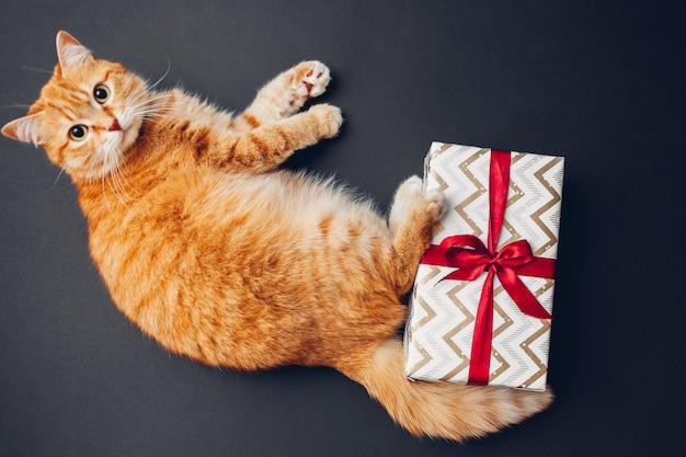 Рыжий кот играет с новогодней и рождественской подарочной коробкой, завернутой в бумагу и украшенной красной лентой