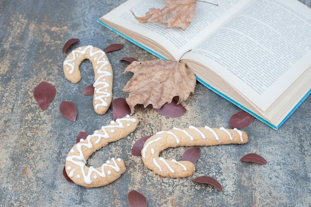Gingerbread cookies and open book with leaves on marble surface. high quality photo