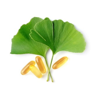 비타민 필이 함유 된 은행 나무 잎